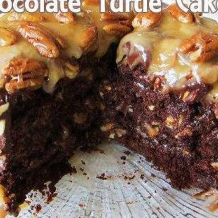 Easy Homemade Chocolate Turtle Cake Recipe   Just A Pinch Recipes