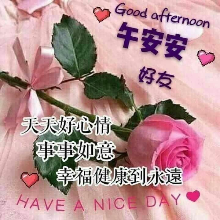 Pin By Yia Lili On 午安 傍晚 祝福语图片 Good Afternoon Day Good Day