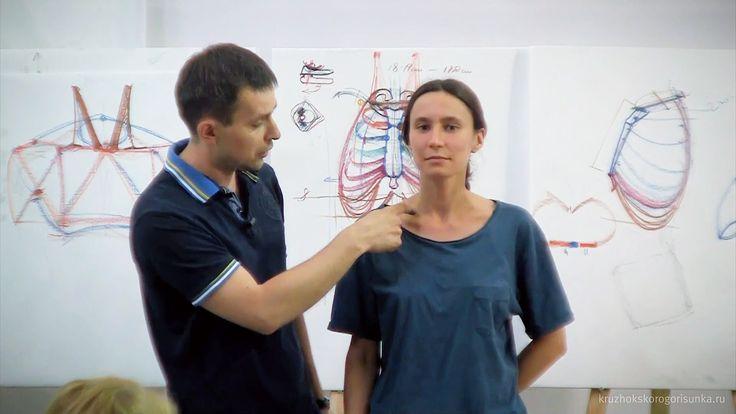 Drawing Anatomy. Alexander Ryzhkin. Video Lecture. Torso.