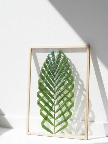 feuille-palmier-encadre