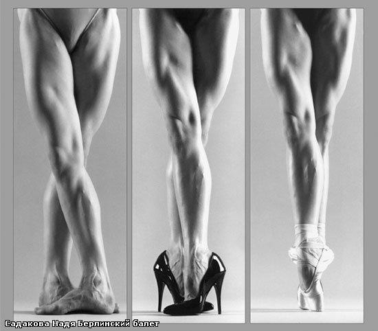 Nadezhda SadakovaPoint, Ballet Dancers, Gert Weigelt, Dancer Legs, Beautiful, Killers Legs, Muscle, Dancers Legsamaz, Dance Fashion