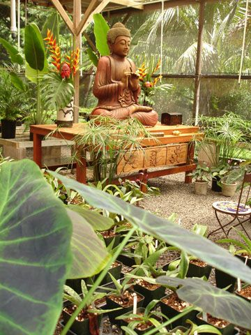 Maui Buddha Garden - Maui Wedding Locations, Buddhist Weddings on Maui, The Sacred Garden Repinned by Aline