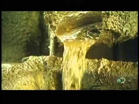 How Its Made   Biodiesel - YouTube