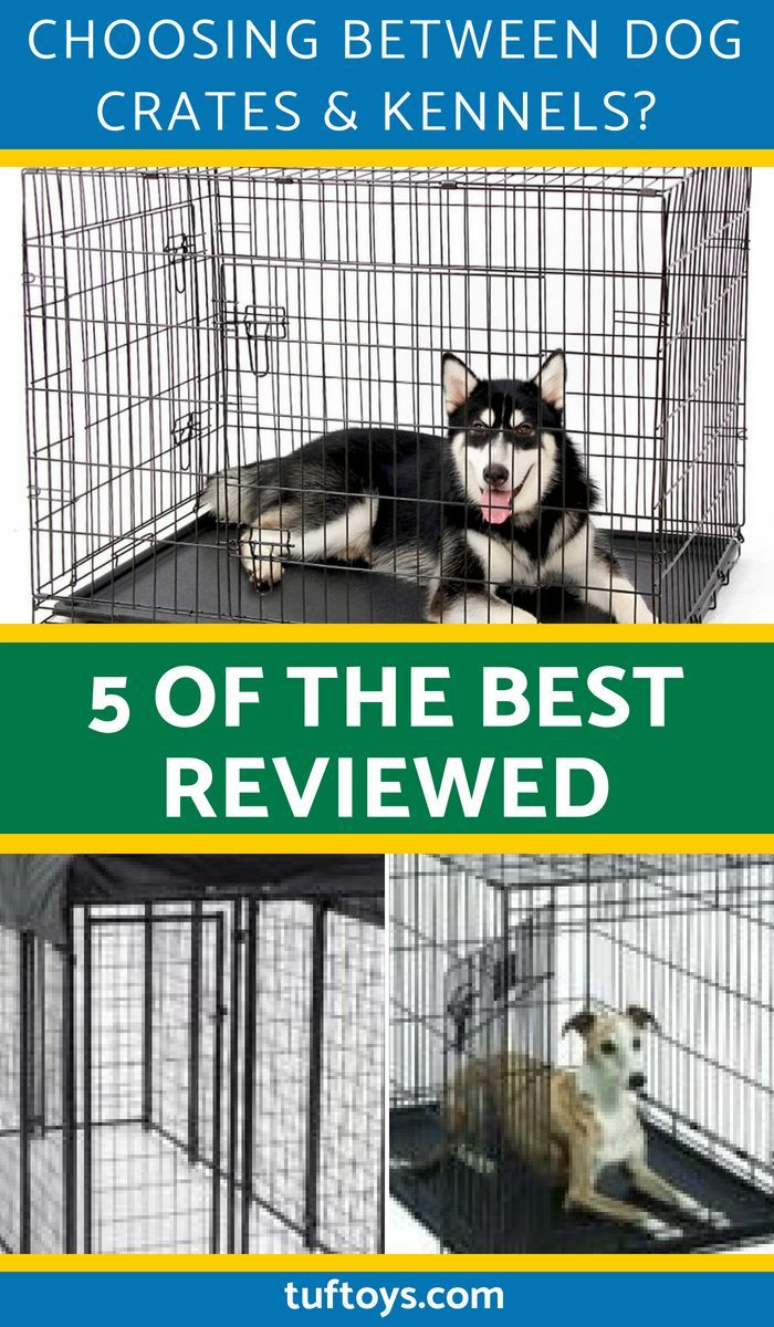 Choosing Between Dog Crates Kennels 5 Of The Best Reviewed