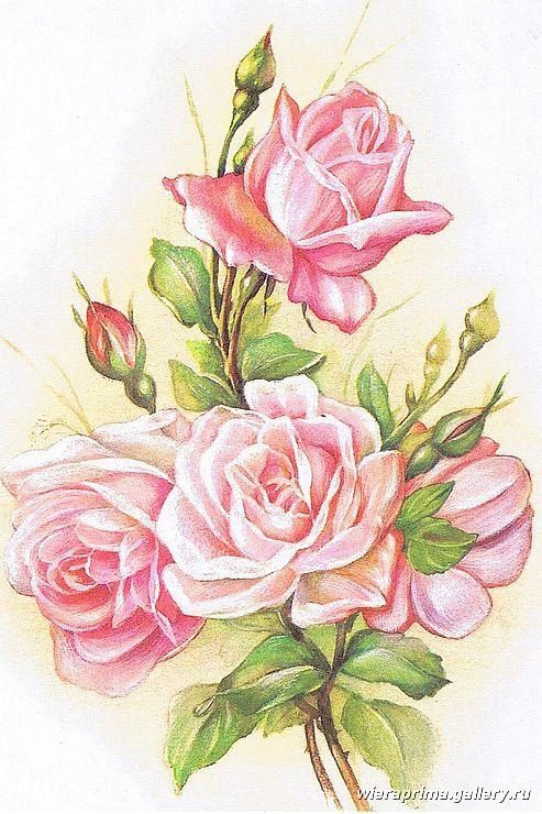 Рисунки цветов карандашом на открытку отличие