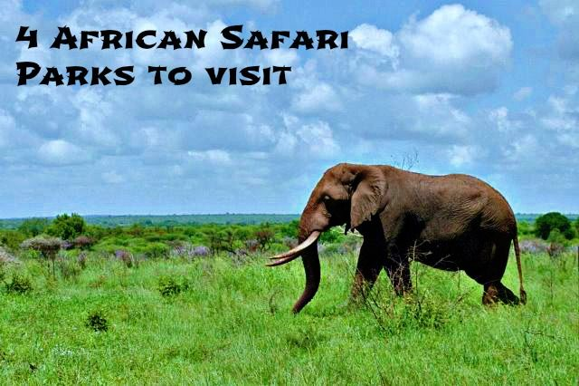 4 safari parks to visit in Africa: http://www.ytravelblog.com/4-safari-game-parks-to-visit-in-africa/