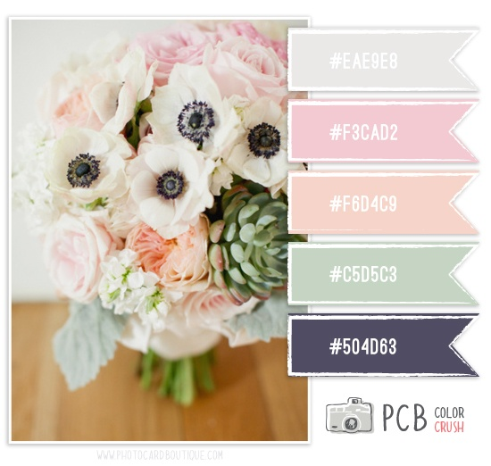 Color Crush Palette · 2.6.2013 #colorcrush
