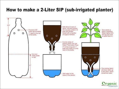 How to make 2-liter SIP's (sub-irrigated planters) and a great seed matching game from greenroofgrowers.blogspot.com