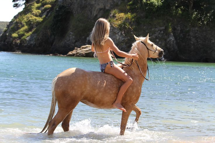 Horse riding on the beach can be a reality in New Zealand. To find out about horse riding in New Zealand go to www.SeeandDo.co.nz