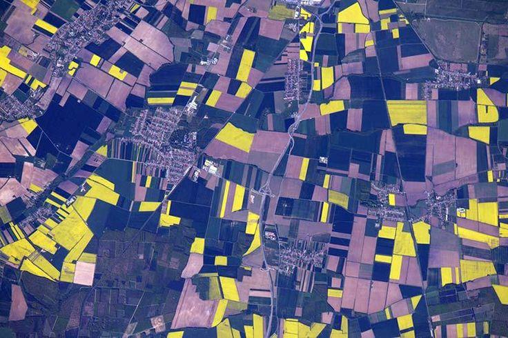 Campos agrícolas de cultivo en Europa del Este, en Hungría. Foto del astronauta Jeff Williams desde la Estación Espacial Internacional