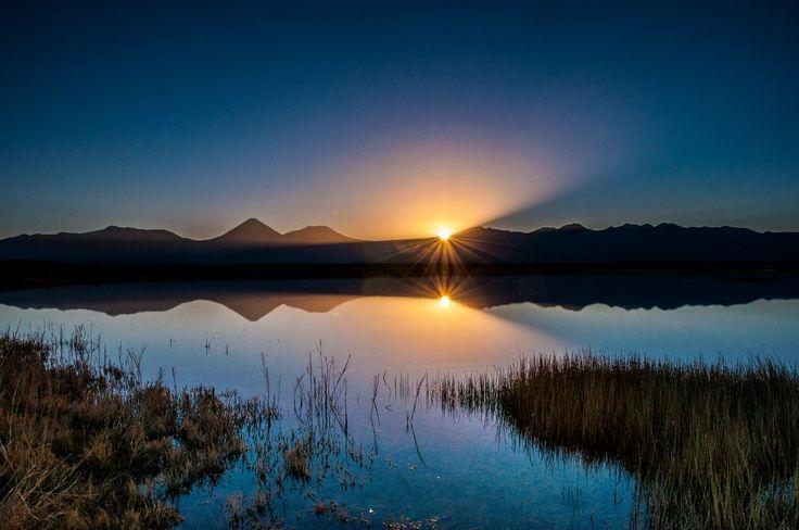 Céjar Lagoon, Atacama Desert - Atacama, Chile | Photography: Miguel César - Copyright ©