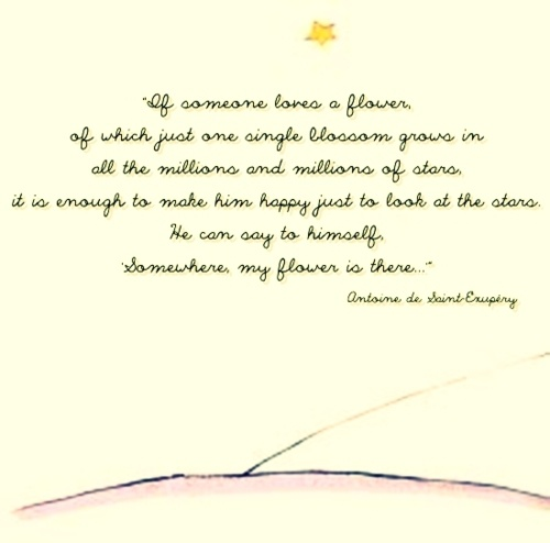 8 Timeless Quotes From The Little Prince: 1000+ Little Prince Quotes On Pinterest