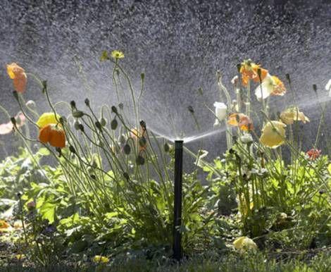 25+ Best Ideas About Gartenbewässerung On Pinterest | Bewässerung ... Tipps Gartenbewasserung Gartengestaltung