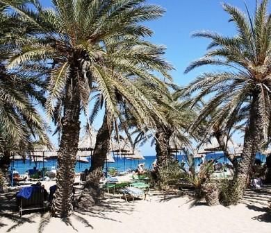Vai in eastern Crete, the only palm forest in Europe, a stunning beach.