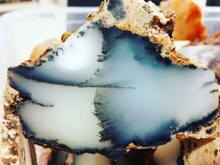 Turkish dendritic landscape agate
