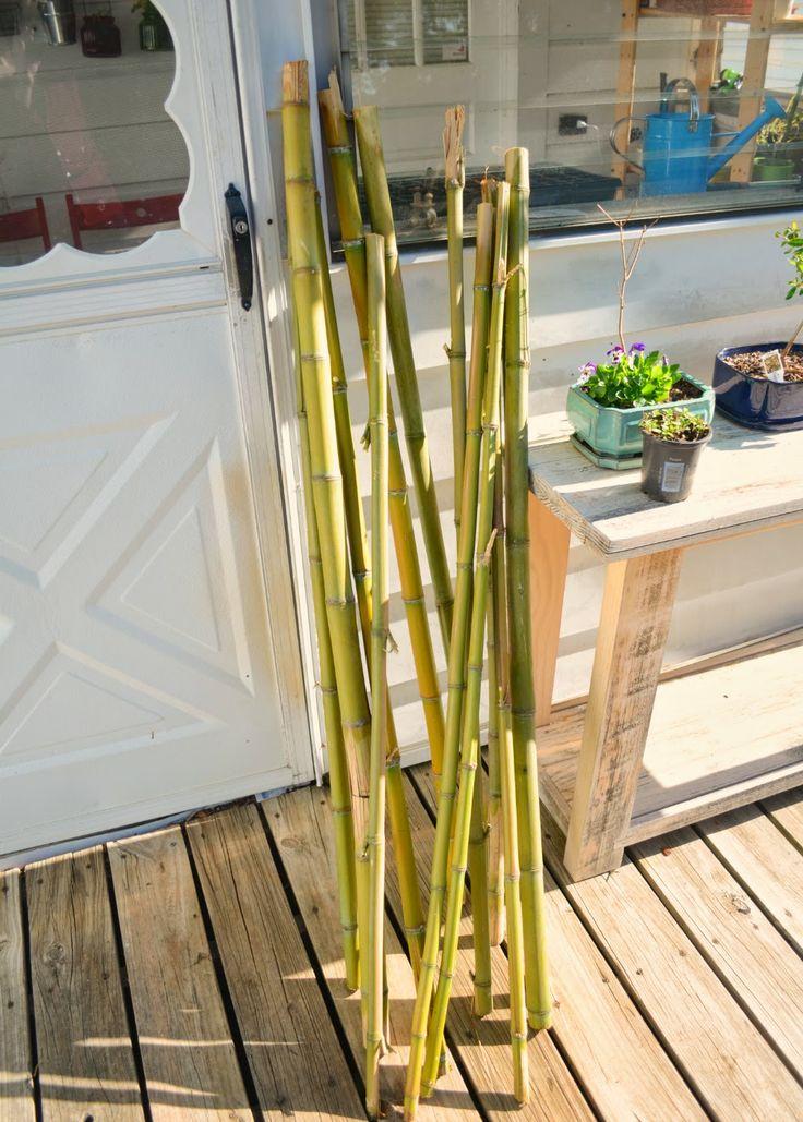 37 besten Bamboo trellis Bilder auf Pinterest | Bambusgitter ...