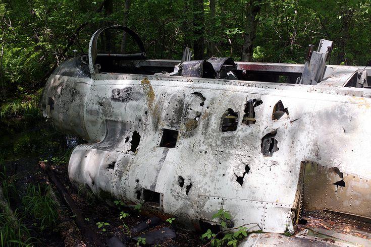 A Crashed Jet Abandoned in the NJ Woods