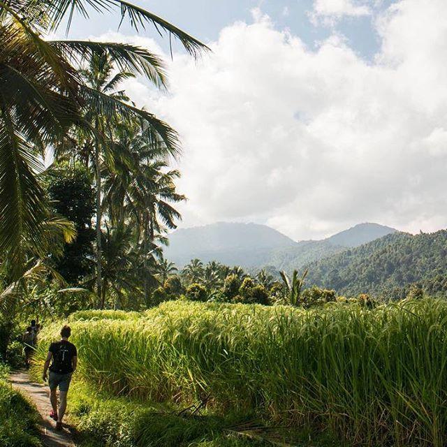 Randonnée à Munduk - Bali - Indonésie