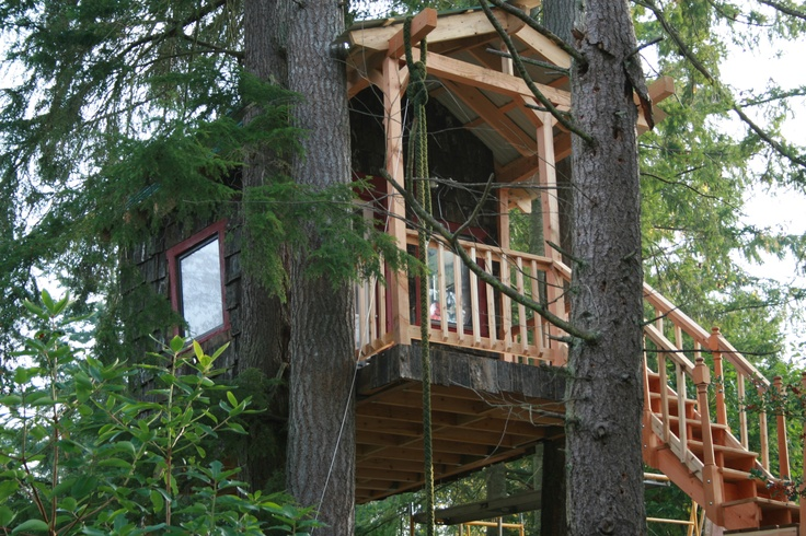 56 Best Tree House Images On Pinterest Tree Houses Treehouses And Treehouse