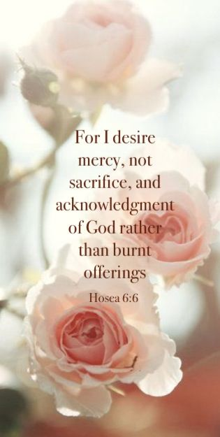 For I desire mercy, and not sacrifice; and the knowledge of God more than burnt offerings. -- Hosea 6:6