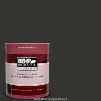 Beautiful BEHR Premium Plus Extremely 1 gal # MQ5-05 Matte limousine leather-based inside pai…