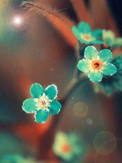 Нежные бирюзовые цветы.