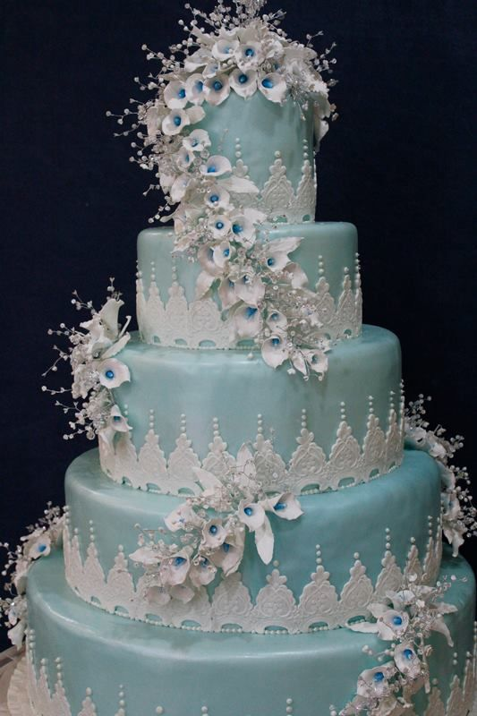 7 best weddiing cakes images on pinterest cake wedding amazing look at this very special cake angelyns cakes contact them now http publicscrutiny Gallery
