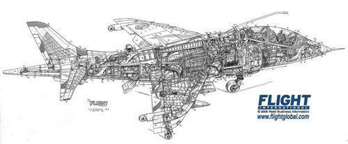 Hawker Harrier T2 Cutaway