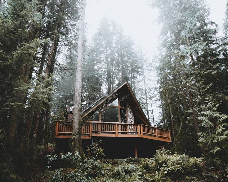17 Best Ideas About Forest House On Pinterest House In