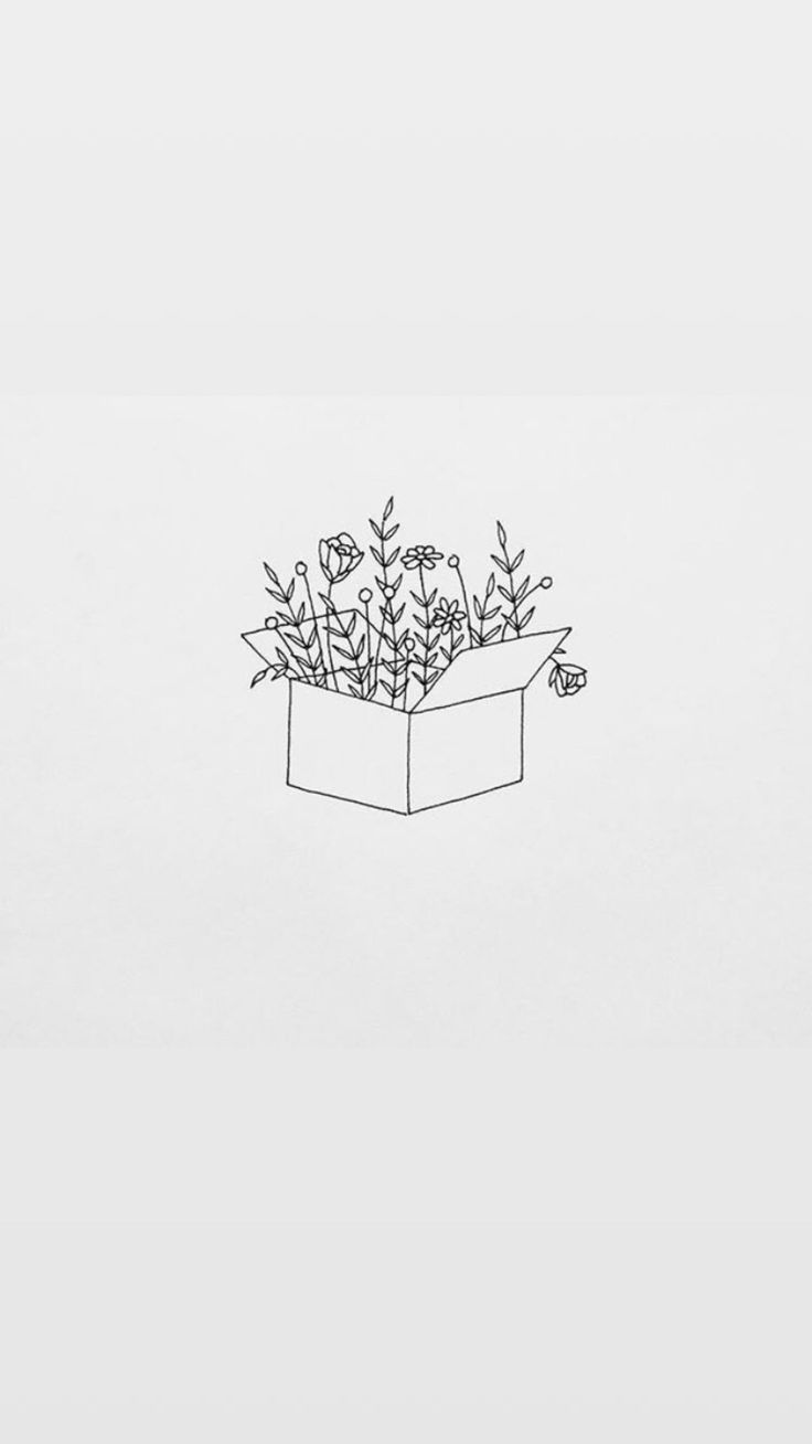 b852dd2c53c6213641c23267cd2e320b » Aesthetic Flower Drawing