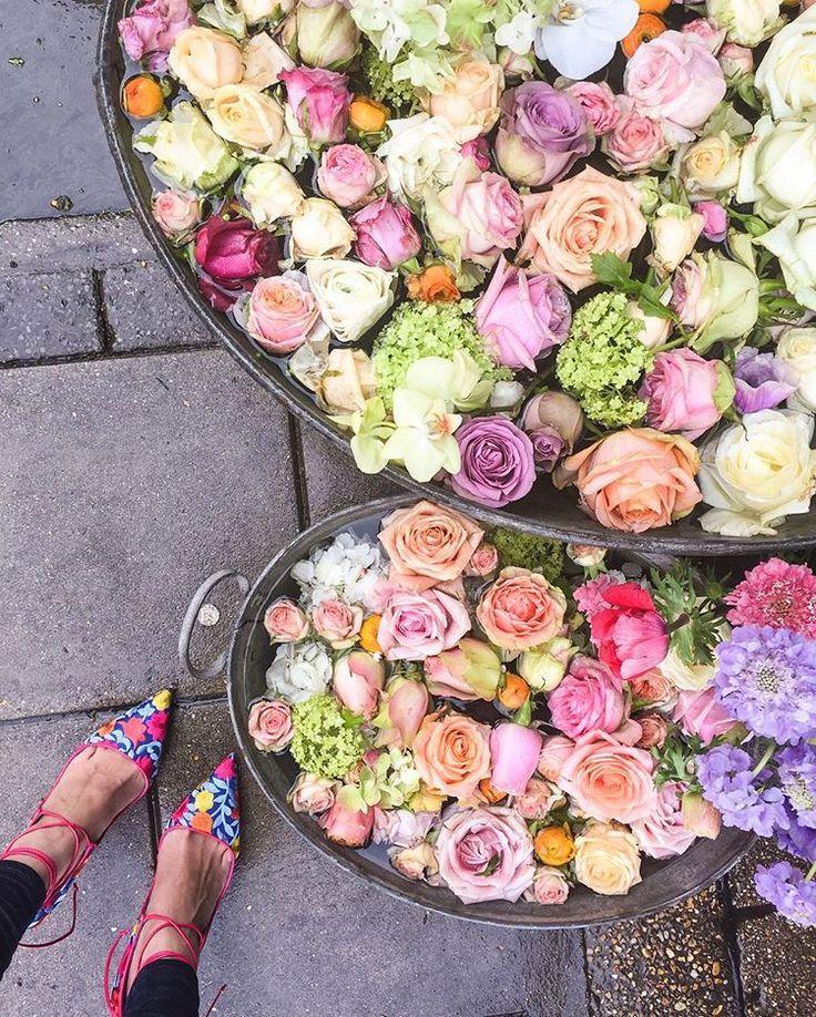 Λουλούδια, πολύχρωμα μακαρόν, μικρά café, ανθισμένες γειτονιές, βιβλιοπωλεία, ονειρεμένες προσόψεις σπιτιών και πεντανόστιμα γλυκά... Αυτό είναι το σύμπαν του account @meanderingmacaron στο Instagram. Ανακαλύψτε το, θα σας ταξιδέψει!