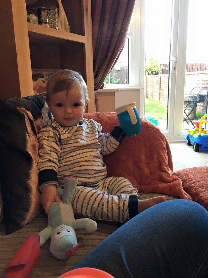 We have lost my little boys talking Iggle piggle on 21/8/16, in Beverley East…