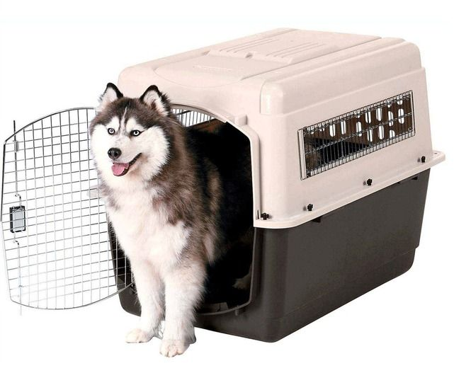 Pet Taxi In 2020 Metal Dog Kennel Dog Kennels And Crates Dog Kennel