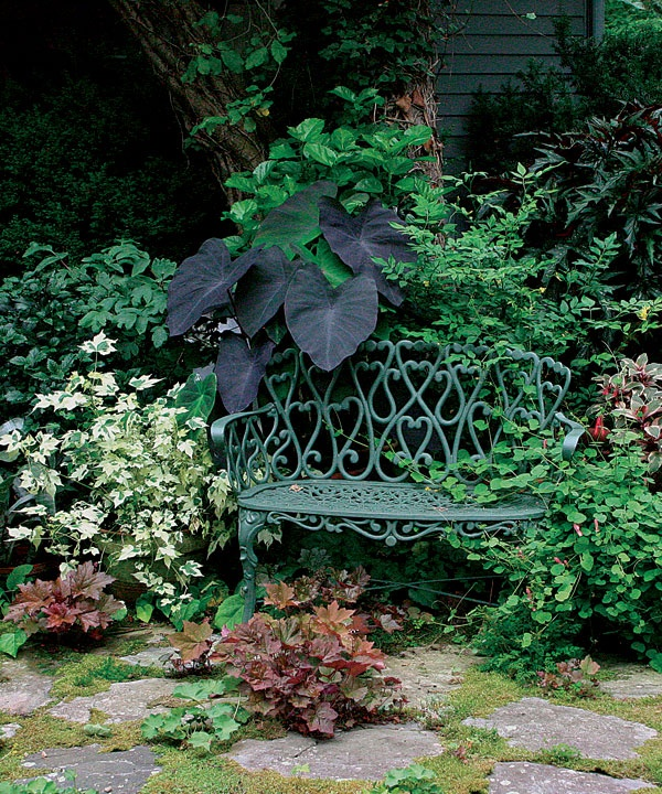 I like the black heart shaped elephant ears with the heart designs on the park bench and the splashes of color with the coral bells.