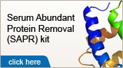 biotRAP Serum Abundant Protein Removal  Kit - removes four highly abundant proteins from human serum and plasma. These high-abundant proteins include albumin, haptoglobin, transferrin, and alpha-1-antitrypsin. The high affinity-based columns contain Separopore®-matrix coupled with antibodies against these major serum proteins. The kit is designed to provide specific, simultaneous, and maximum removal of these four proteins, which comprise 80-90% of the proteins in human serum| Services | 2D…