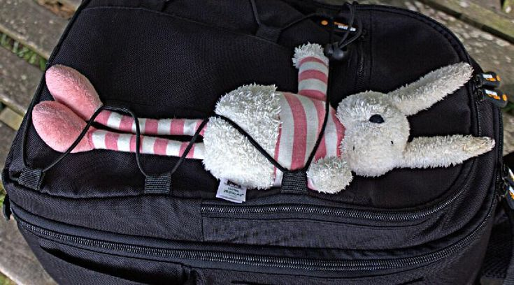 Found on 23 Sep. 2015 @ Blickling Estate, Norfolk. Found on Lake Walk, must have been lost that day as was dry. Has been left with National Trust Visitor Reception Visit: https://whiteboomerang.com/lostteddy/msg/78evfr (Posted by Lisa on 28 Sep. 2015)