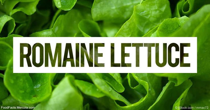 Learn more about romaine lettuce nutrition facts, health benefits, healthy recipes, and other fun facts to enrich your diet. http://foodfacts.mercola.com/romaine-lettuce.html?utm_source=facebook.com&utm_medium=referral&utm_content=facebookmercola_foodfactslink&utm_campaign=20170429_romaine-lettuce