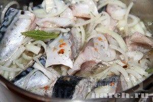 Скумбрия в маринаде (горячий способ), xolodnye rybnye zakuski xolodnye zakuski zakuski