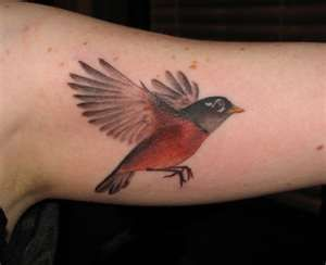 Image Search Results for realistic bird tattoos