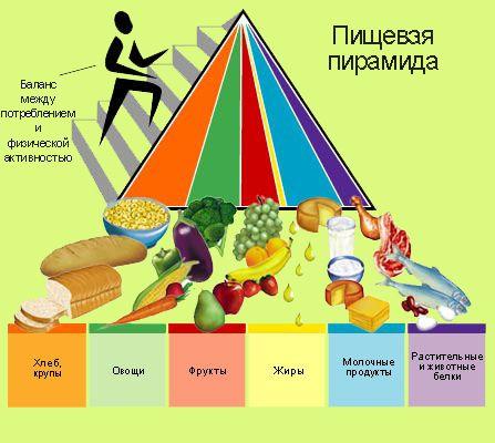 сжечь жир на животе питание