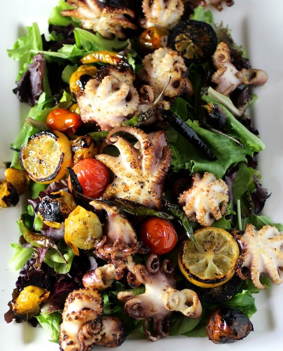 grilled baby octopus salad with charred lemons, baby heirloom tomatoes, chili peppers, mixed greens, + lemon oregano dressing
