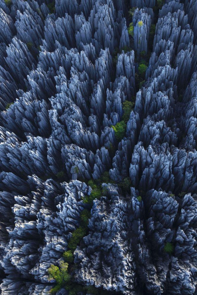 Tsingy Forest, Madagaszkár