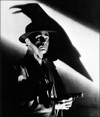 Raven or crow shadow in slash of light film noir style