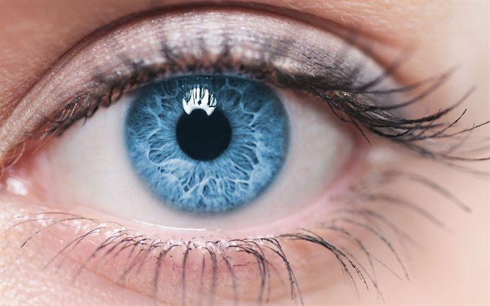 Lataa kuva makro silmät, siniset silmät, naisen silmät, kauniit silmät