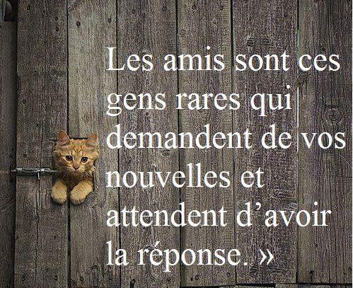 ♠ Les amis .... ♠