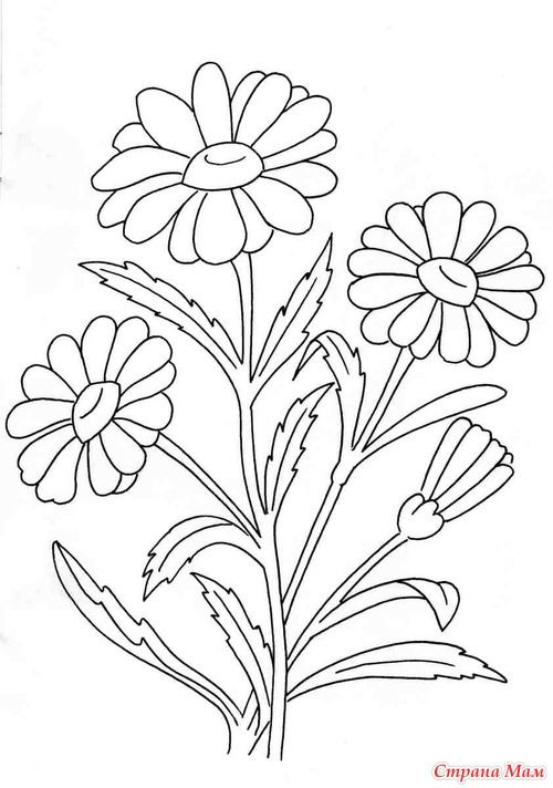 free margarita coloring pages - photo#18