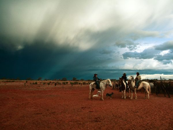 Photograph by Joe Scherschel -The sky stretches far and wide above cowgirls—or jillaroos—on a cattle ranch in Queensland. Ranching is serious business in Australia.