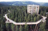 Der Baumwipfelpfad im Nationalpark Bayerischer Wald