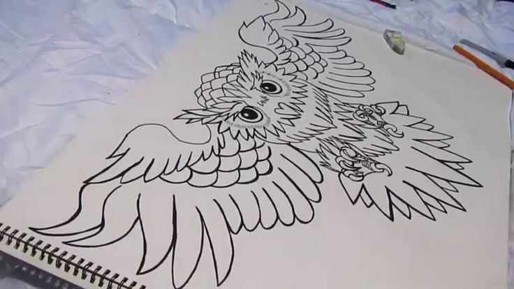 Your typical owl chest tattoo. - YouTube