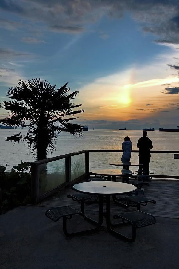 Alex Lyubar Fine Art Phonography   Vancouver - Canada Photograph - Beautiful Sunset On The Waterfront. by Alex Lyubar #AlexLyubarFineArtPhotography #VancouverCanada #SeaScape #PalmTree #Sunset #ArtForHome #FineArtPrint